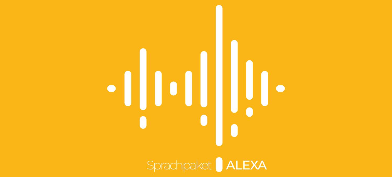 Inoffizielles Alexa Sprachpaket für Roborock Roboter mit LDS | KAENI
